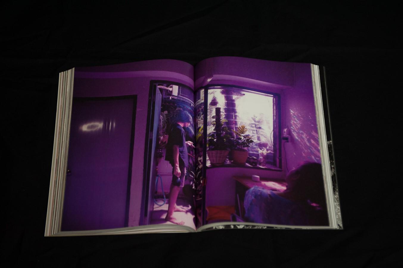 Window # 01