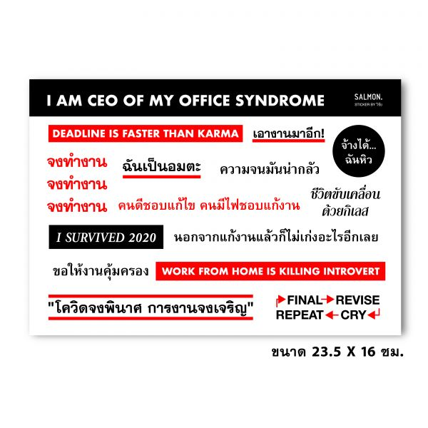 'I AM CEO OF MY OFFICE SYNDROME' STICKER