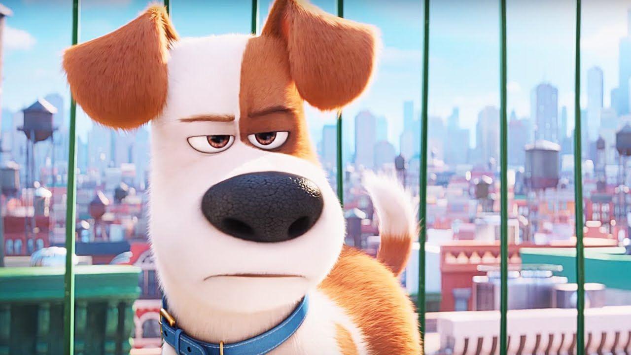 รีวิวหนังแอนนิเมชั่น The Secret Life Of Pets - เรื่องลับแก๊งขนฟู